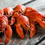 Live-Off-The-Land with These 7 Summer Survival Foods