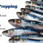 Frugal Prepping: This Survival Food is One of the Highest Sources of Protein