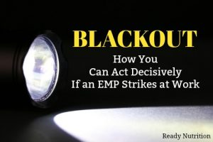 Blackout: How You Can Act Decisively If an EMP Strikes at Work