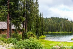 Prepper Strategy: Vital Considerations When Planning a Bug-Out Location