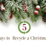 5 Easy Ways You Can Recycle a Christmas Tree
