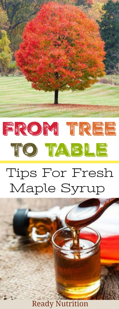 Here's what you need to make fresh maple syrup!