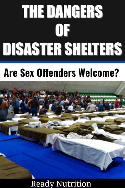 The dangers of going to a disaster shelter or a FEMA camp during an evacuation are many. Because of this, we've spent time attempting to encourage everyone to do their best to avoid both at all costs by having back up plans in place. But there's one more danger of going to a disaster shelter that is perhaps the most disturbing of all: sexual assault.