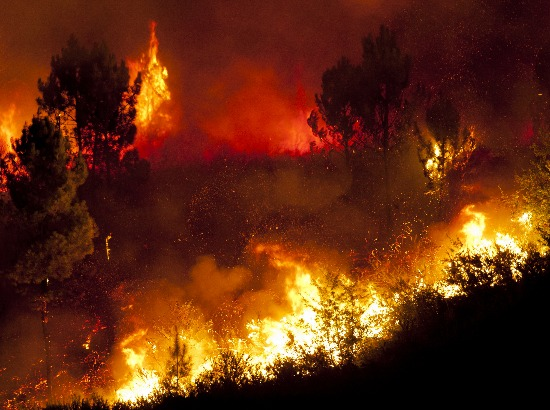 Wildfire Inferno Over 100 wildfires are ravaging parts of the United States. It's only a matter of time before one of these could come to your neck of the woods. Are you prepared?