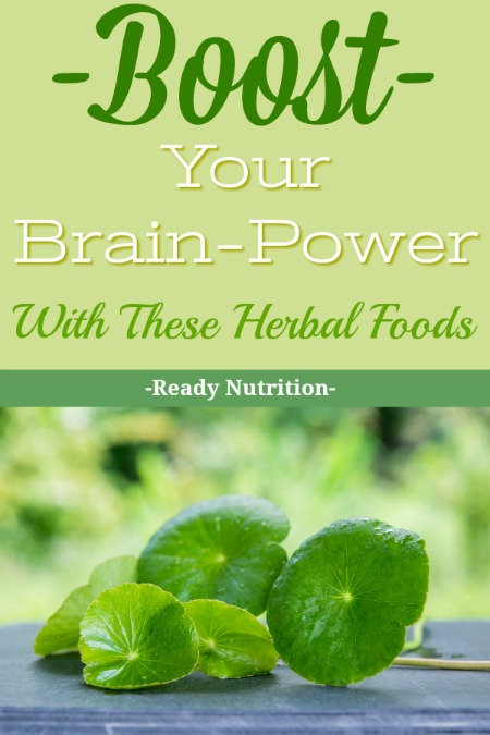 """The human brain is a marvelous apparatus that we are now only beginning to understand in terms of its capabilities and functions. There are some supplements that you can take that will help in terms of brain """"improvement"""" that you may be interested in. #ReadyNutrition"""