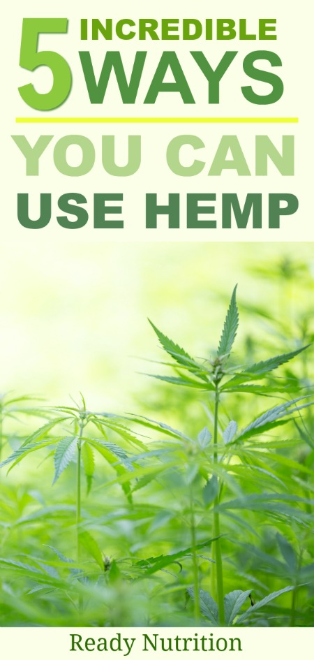 If there is such a thing as a wonder plant, hemp is it. Let's take a look at a few ways you can start using hemp today. #ReadyNutrition