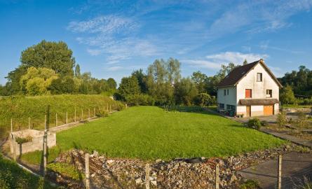 Ben Falk: Adaptive Land Homesteading Video