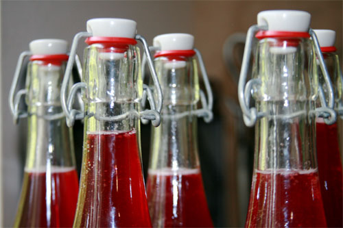 Get Fizzy With It! Make Your Own Homemade Soda