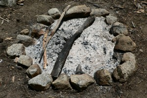8 Uses For Wood Ash