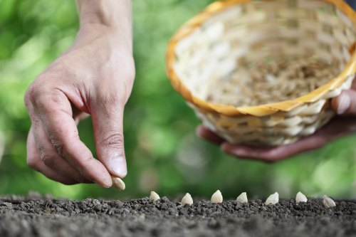 Why Every Prepper Needs Non-GMO Seeds in Their Long-Term Supplies