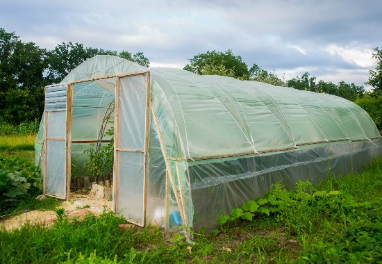 Plastic Sheeting For Greenhouses And Disasters Alike