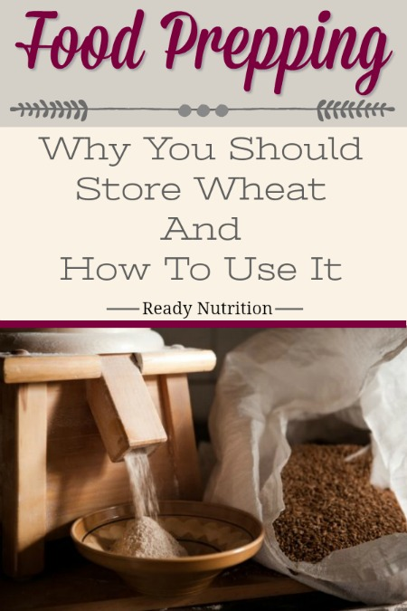Wheat is a healthy must-have for the prepper's food pantry. Here are some great reminders of why you need to store it and how to use it!
