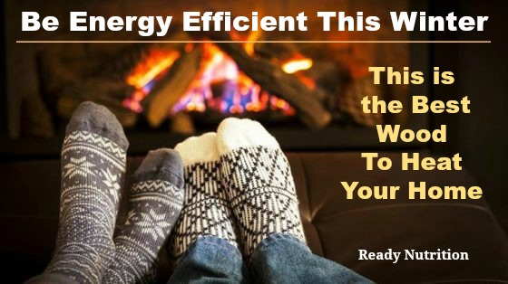 Ready Nutrition - Be Energy Efficient This Winter and Use the Right Wood for the Fire