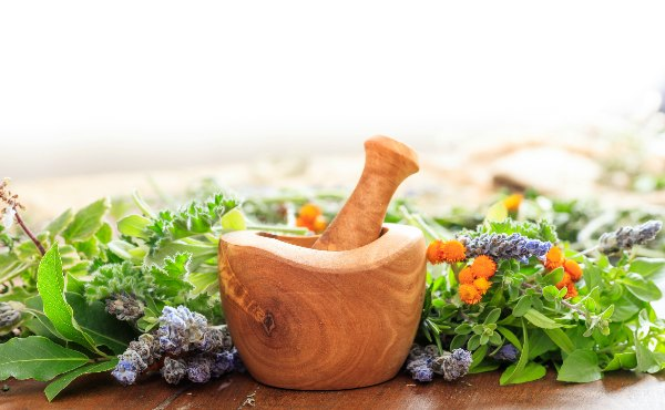 The Whole Herb: The Most Important Principle of Herbal Medicine